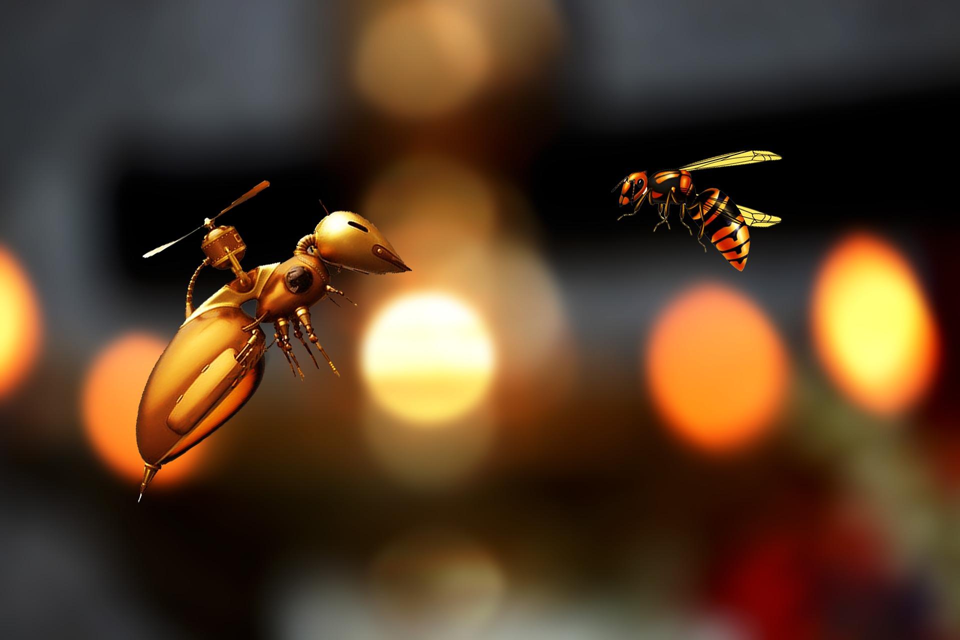 Robot-insecte, solaire spatial, IA-concepteur des discours : les infos tech à ne pas manquer de la semaine du 24 juin